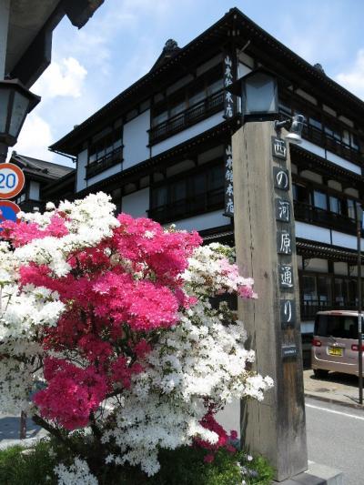 ◎草津温泉と石楠花