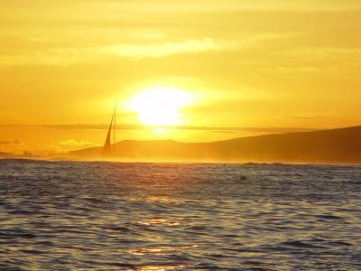2009 モアナサーフライダー滞在 ハワイ旅行記