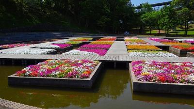 庭園紀行(26)・・・とっとり花回廊 フラワートレインで一周編