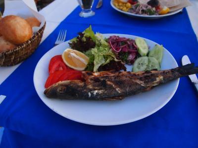 バケットを食べにイスタンブール、レンタカーでパムッカレ・エフェスの旅 5/6 -アンタルヤ-