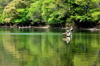 ズミの花咲く戦場ヶ原、新緑の湯ノ湖散策