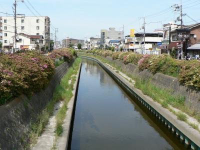 日本の旅 関西を歩く 大阪府寝屋川市「せせらぎ親水公園」、友呂岐(ともろぎ)緑地周辺
