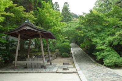 京田辺一休寺から八幡市松花堂へ!2013年