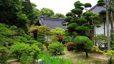 庭園紀行(85)・・・豊浦町妙青寺の庭園。