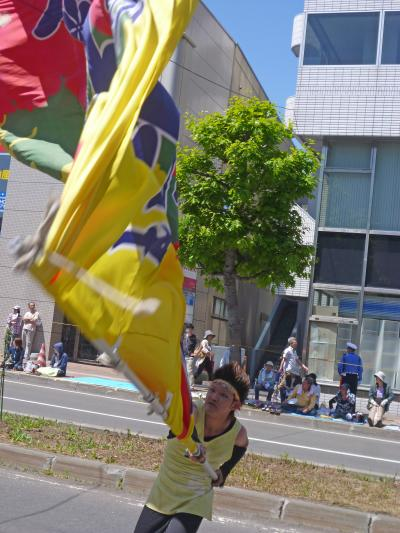 第22回YOSAKOIソーラン祭り(2013年)平岸会場1(札幌市立大学~真花~、[Sin]、江別まっことえぇ&北海道情報大学、東海大学 響)