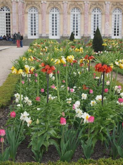 フランスお一人様の旅09 ヴェルサイユ宮殿~トリアノンと庭園~