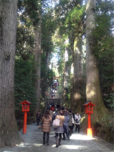 1月の箱根