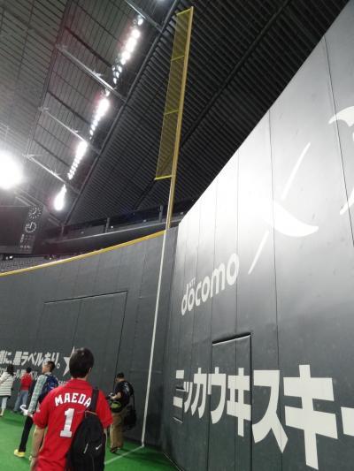 2013.06 がんばれカープ セ・パ交流戦@札幌~ドームツアー編~