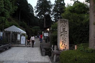 京都 三室戸寺 あじさいライトアップ