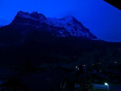 スイスハイキングに来ています9日目・ツェルマットへ移動