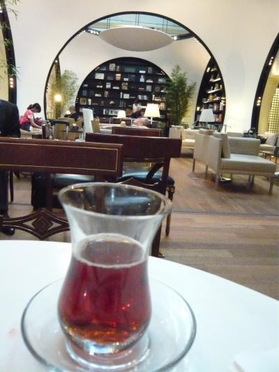 ものすごく太っ腹なサービス!トルコ航空イスタンブール空港はすごい(無料の食事付きの一日市街観光と豪華なラウンジ体験記)