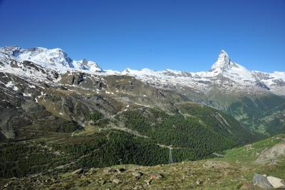 スイス花とハイキングの旅・ブラウヘルトースネガ