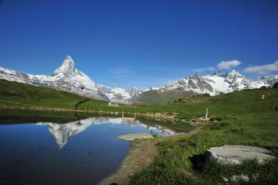 スイス花とハイキングの旅・ツェルマットブラウヘルトースネガ湖巡り