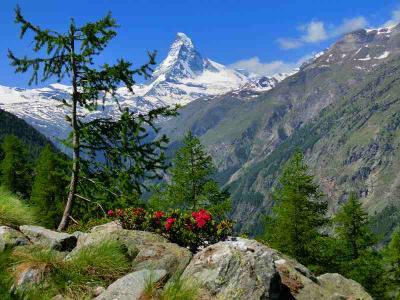スイスハイキングに来ています15日目・マッターホルンビューロードをハイキング