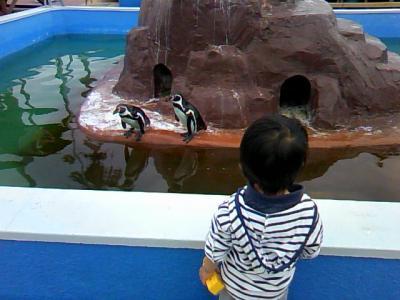 母子旅☆知多半島-南知多ビーチランド・おもちゃ王国(トミカ・プラレール館)