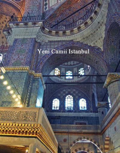 猫とモスク、ときどきチャイ<イスタンブール旧市街 モスクに魅せられて>