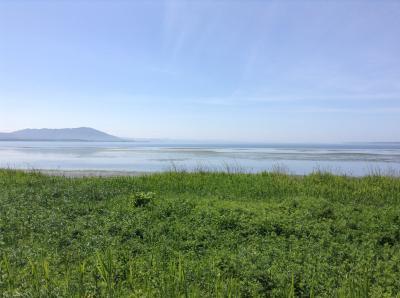 旭川からサロマ湖のワッカ原生花園へ   2     一路サロマ湖への巻