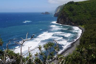 268-マイルで行く初ハワイ!ハワイ島&アウラニ・ディズニーリゾート満喫の旅【9】…5日目・ワイピオ渓谷&ポロル渓谷トレッキング