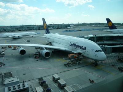 ものすごく快適な空の旅でした、ルフトハンザ航空A380のファーストクラス。ドイツのフランクフルト空港・ファーストクラスラウンジでの、旬のホワイトアスパラカスディナーは絶品。