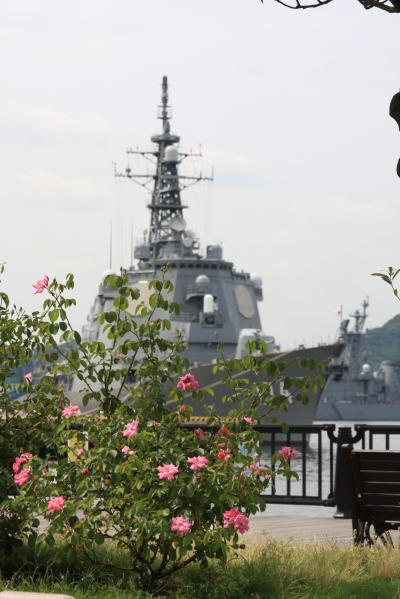2013年。。夏  ♪ヨコハマ~  横須賀~♪