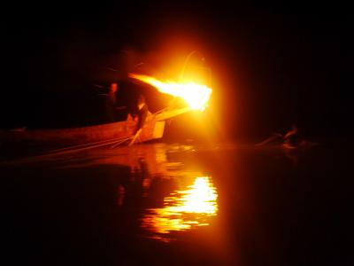 小瀬鵜飼は涼しい川面の熱い漁火