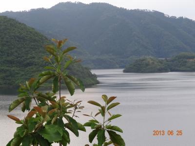 山間のしっとり静かな奥津温泉を散策