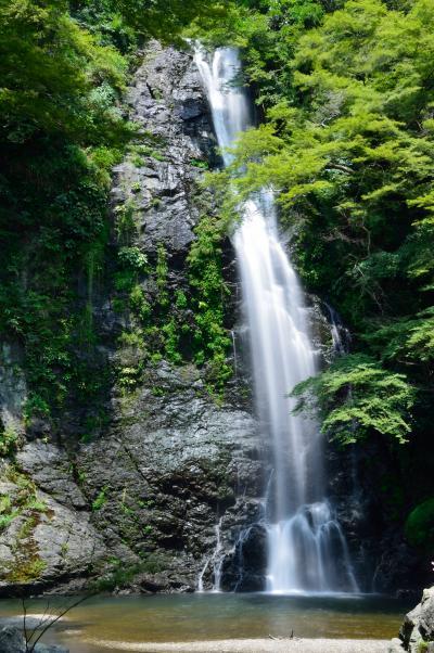 暑~い(;一_一) 涼を求めて箕面大滝へ行ってきました