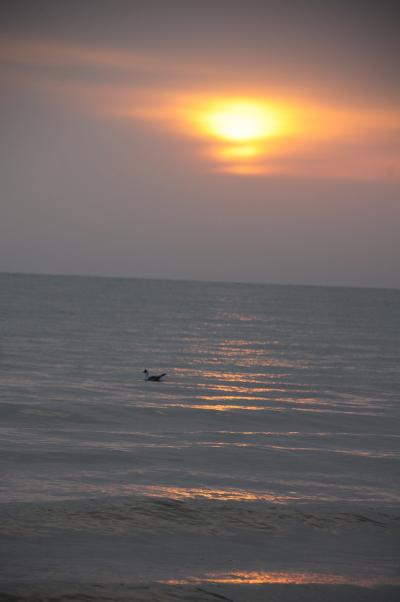 GW西北旅18★青海湖★中国最大の湖で日の出!