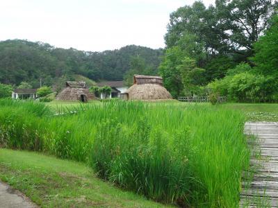 まほろば古の里歴史公園と阿久津八幡神社