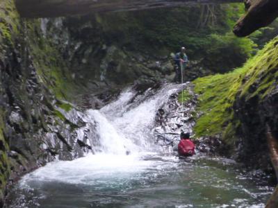 沢登り  濁河 兵衛谷下流 もはやサバイバルや~の巻き