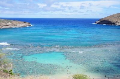 便乗して初ハワイ♪ ~まったり3世代の旅~④6日目:ハナウマ湾でシュノーケリング