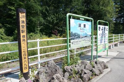 2013.08青春18きっぷ鉄旅「東京⇒清里⇒長野 」-JR線全線乗りつぶし-