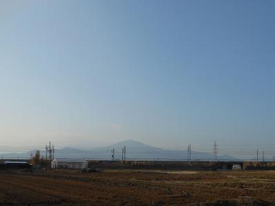 平塚市でバードウォッチング [2013](2)