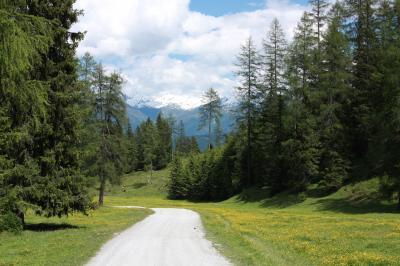 2013年 チロルアルプス花紀行 憧れの農家民宿で過ごす1週間 【7】山上のチロル料理、お花とカルクケーグルを見ながらハイキング