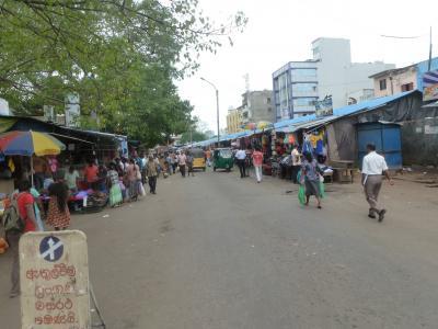 スリランカ大名旅行1