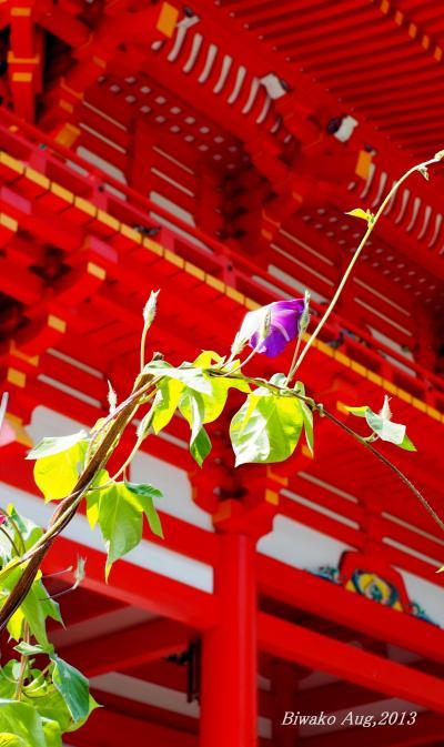 【滋賀県(大津)】 競技かるたの聖地「近江神宮」