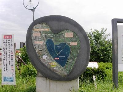 2013 ラムサール条約登録地・渡良瀬遊水地を歩く