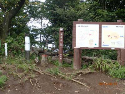 陣馬往還20キロ(1)景信山へ。