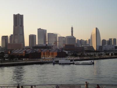 電車を見に大宮までと、ついでに横浜も行きました! 鉄道博物館 横浜中華街 【2010年1月4日~2010年1月5日】