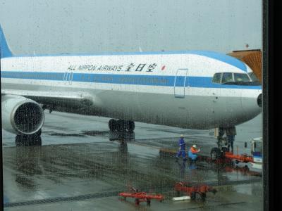 松山空港では昔のカラーの全日空が見られました。