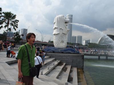 2012Mar. 1stシンガポール 5 モザイクな街歩き