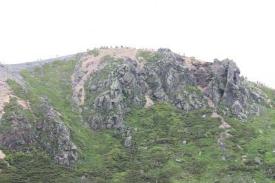 本白根山でフラワーウォッチング [2013](1)