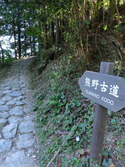 熊野古道を歩いてみたら・・・