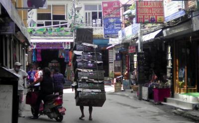 ネパール3: カトマンズ 「安くて、きれいで、快適な宿」 を求めて