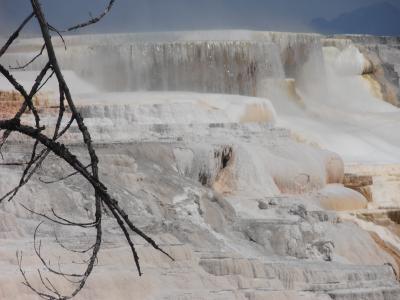 バンクーバーからイエローストーンまで、4300kmのドライブ旅行 ⑥イエローストーン(Mammoth Hot Springs)