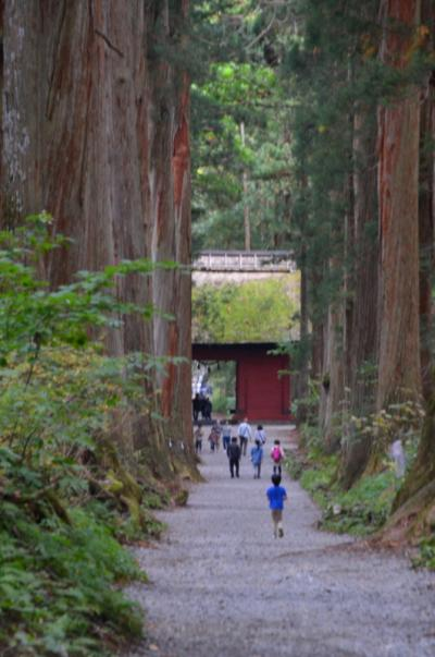 遠くても一度は詣で善光寺、天岩戸伝説の戸隠神社を歩く