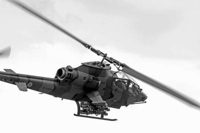 陸上自衛隊 八尾駐屯地祭 エアーフェスタ IN YAO 2013