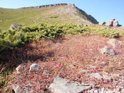 紅葉を求めて御嶽山