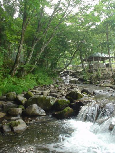 兵庫ガッツリ観光旅行【1日目】~渓谷と滝~