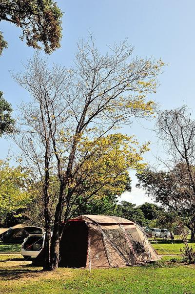 越前三国秋キャンプ